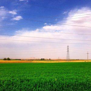 dehgolan-farms